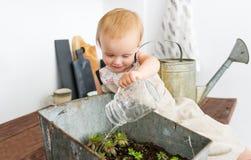 Entzückendes Baby, das mit inländischen Anlagen und eingemachten Sprösslingen spielt Lizenzfreie Stockfotografie