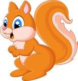 Entzückendes Eichhörnchen der Karikatur Stockfotos