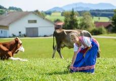 Entzückendes kleines bayerisches Mädchen auf einem Landfeld mit Kuh in Deutschland Stockbild