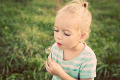 Entzückendes kleines blondes Mädchen mit Löwenzahnblume Stockbilder