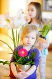 Entzückendes kleines Mädchen, das um Anlagen und Blumen sich kümmert Lizenzfreie Stockbilder