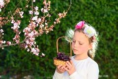 Entzückendes kleines Mädchen des Porträts mit Korb der Früchte im Freien Sommer oder Herbst Ernte Shavuot lizenzfreie stockbilder