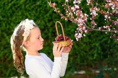 Entzückendes kleines Mädchen des Porträts mit Korb der Früchte im Freien Sommer oder Herbst Ernte Shavuot stockbild