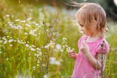 Entzückendes kleines Mädchen in einer Wiese Stockbilder