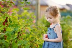 Entzückendes kleines Mädchen mit roten Johannisbeeren stockfoto