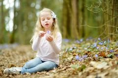 Entzückendes kleines Mädchen, welches im Wald die ersten Blumen des Frühlinges am schönen sonnigen Frühlingstag auswählt stockbild