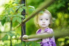 Entzückendes Kleinkindmädchen auf einem grünen Hintergrund lizenzfreie stockfotos