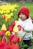 Entzückendes Kleinkindmädchen, das Tulpen im Garten erfasst Stockfotografie