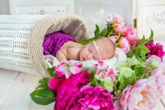 Entzückendes nettes süßes schlafendes Baby im weißen Korb mit Blumen auf Bretterboden Stockfoto