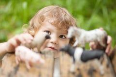 Entzückendes Spiel des kleinen Mädchens mit Tierspielwaren Lizenzfreies Stockfoto