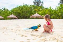 Entzückendes kleines Mädchen am Strand mit buntem Papageien Stockbild