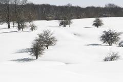 Entzia mountain range in winter, Basque Country, Spain Royalty Free Stock Photos