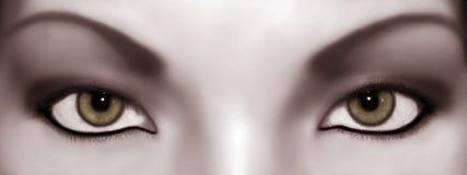 Entziehen Sie Blick Sepia Lizenzfreie Stockbilder