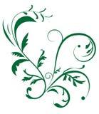 Entziehen Sie Hintergrund mit Pflanzenverzierung vektor abbildung