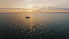 Envíe el lanzamiento por los abejones en el mar en la puesta del sol almacen de video