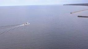 Envíe entrar abrigar la opinión aérea de Roja Letonia del vídeo de la opinión superior 4K UHD del abejón del campo metrajes