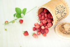 Envase de la corteza de abedul con las fresas salvajes Imagen de archivo libre de regalías