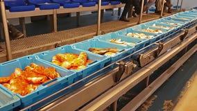 Envases azules con la captura de los pescados de mar, delicadezas almacen de video