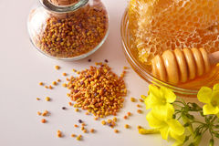 Envases con cierre del top de la abeja del panal y del polen de la miel para arriba Foto de archivo