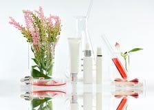 Envases cosméticos de la botella con las hojas herbarias rosadas y la cristalería científica, paquete en blanco de la etiqueta pa foto de archivo libre de regalías