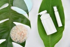 Envases cosméticos de la botella con las hojas herbarias verdes, etiqueta en blanco para la maqueta de marcado en caliente fotos de archivo