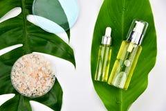 Envases cosméticos de la botella con las hojas herbarias verdes, etiqueta en blanco para la maqueta de marcado en caliente foto de archivo libre de regalías