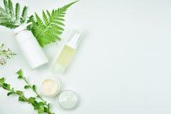 Envases cosméticos de la botella con las hojas herbarias verdes, paquete en blanco de la etiqueta para la maqueta de marcado en c fotografía de archivo libre de regalías