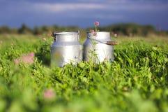 Envases de la leche Fotografía de archivo libre de regalías