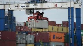 Envases sempty de la carga de la grúa de Greer del puerto interior almacen de metraje de vídeo