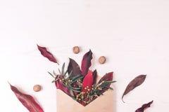Envelop, bladeren, noten en bloemsamenstelling stock afbeelding