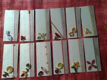 Enveloparts. royalty-vrije stock foto's