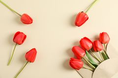 Envelope and beautiful red tulips with space for text on color background. Top view royalty free stock image