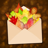 Envelope with colorful autumn leaves vector.  Stock Image