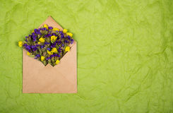 Envelope with dry wildflowers on a rumpled paper background. Backgrounds and textures. Royalty Free Stock Images