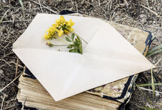 Envelope with flower Royalty Free Stock Images