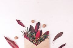 Envelope, leaves, nuts and flower composition. stock image