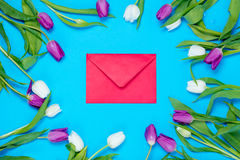 Envelope and tulips Stock Images
