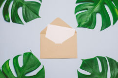 Envelope with white card and green leaves on blue background Royalty Free Stock Images