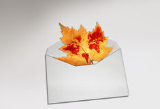 Enveloped with dry leaf. Dry leaf with world map in the envelope to send the message of caring our environment Royalty Free Stock Photography