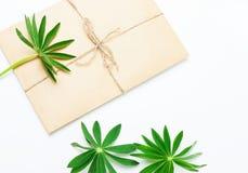 Enveloppe de papier avec les feuilles vertes Photographie stock libre de droits