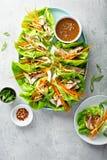 Enveloppes grill?es asiatiques de laitue de gingembre de poulet photos libres de droits