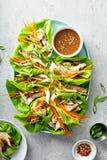 Enveloppes grill?es asiatiques de laitue de gingembre de poulet photos stock