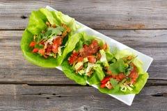 Enveloppes mexicaines de laitue de porc photo libre de droits