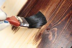 Envernizando uma prateleira de madeira Foto de Stock