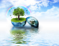 Environment Stock Photography