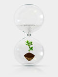 Environment. Concept with young plant in hourglass Royalty Free Stock Photography