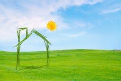environment стоковое изображение