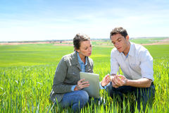 Environment And Agriculture Stock Image
