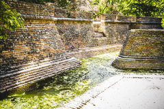 Environment, building in ruins on a green swamp with water Royalty Free Stock Photos