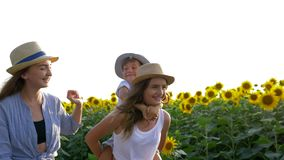 Environment and children, girls with younger brother walk around the field with sunflowers and enjoy the fresh air in. Environment and children, girls with a stock footage